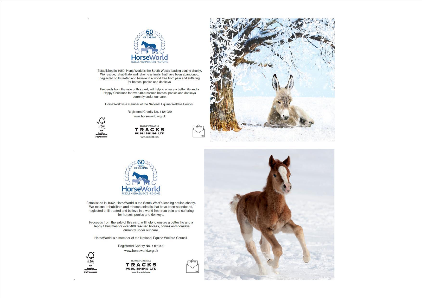 HorseWorld Charity Glitter Christmas Cards (10 pack) | HorseWorld ...