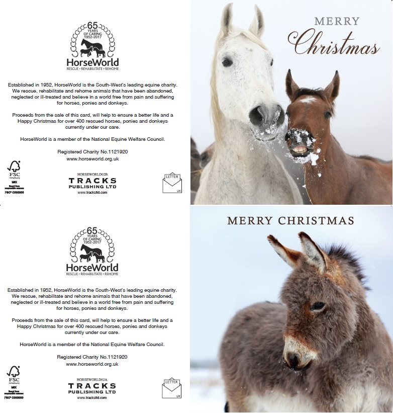 Shop | HorseWorld - Horse Rescue Rehabilitation and Re-Homing Charity