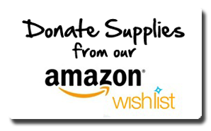 15620d6837 Amazon Wish List