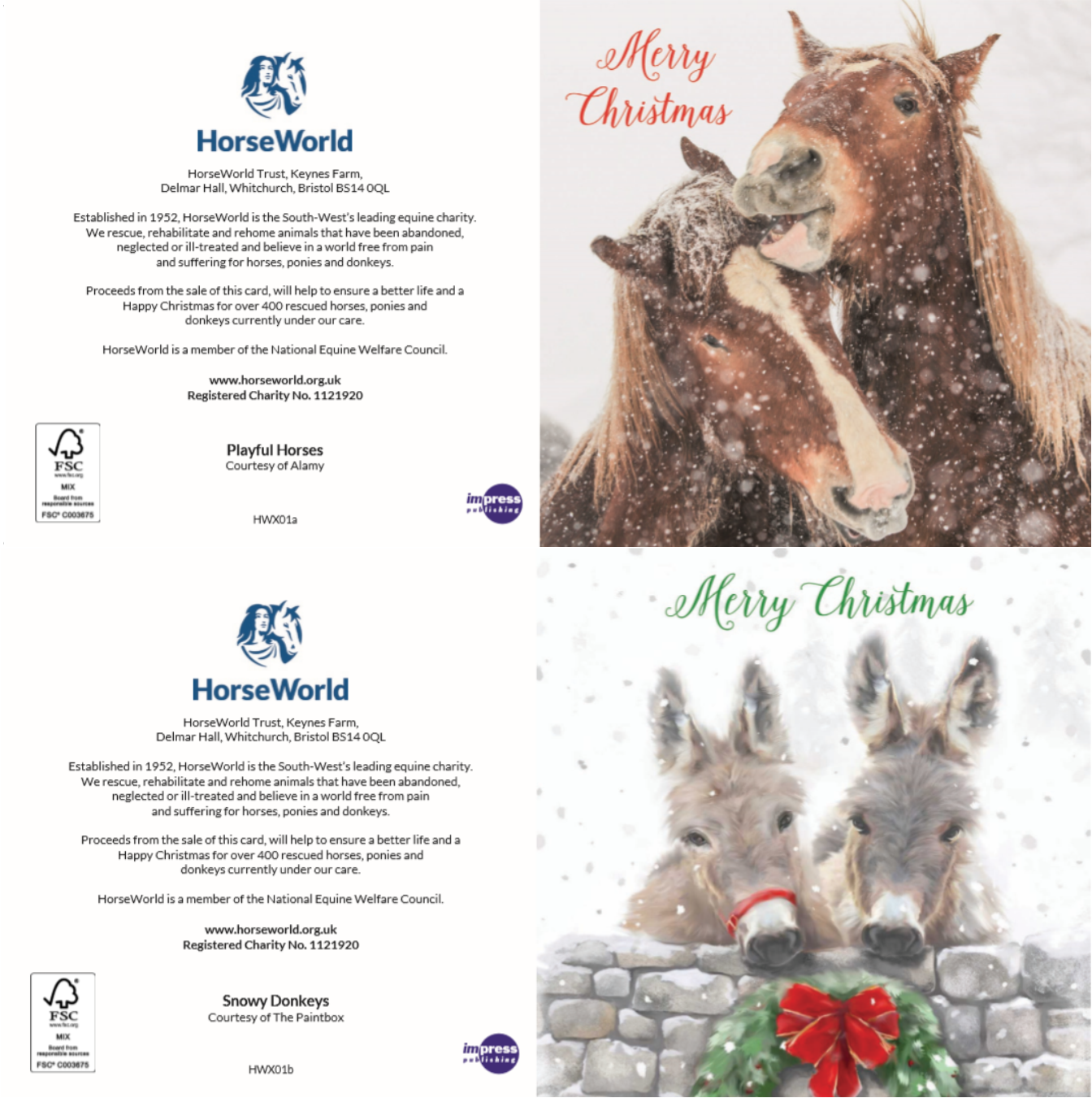2019 Charity Christmas Cards