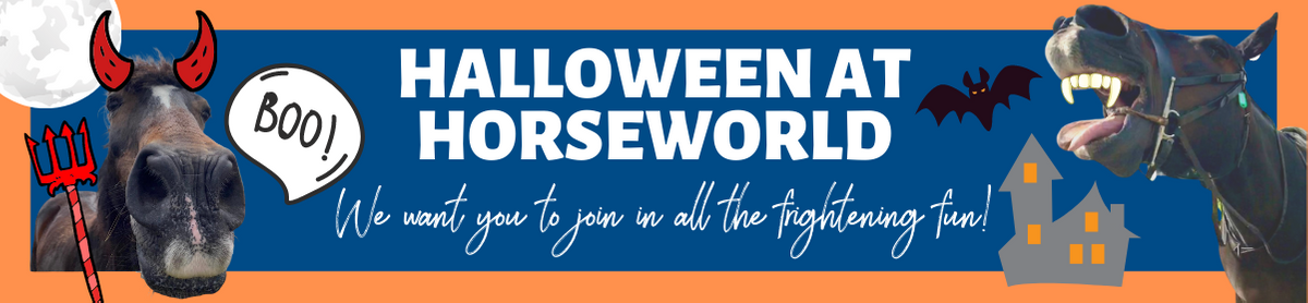 Halloween Website Page Header.png