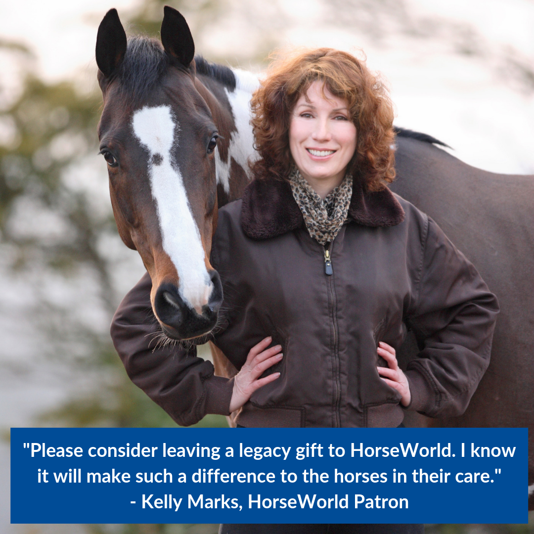 1561542709-please-consider-leaving-a-legacy-gift-to-horseworld-i-know-it-will-make-such-a-differnece-to-the-horses-in-their-caire-kelly-marks-horseworld-patron.png